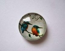 Kingfishers Needle Minder