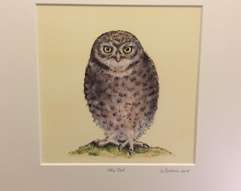 Little Owl - pastel and pen drawing