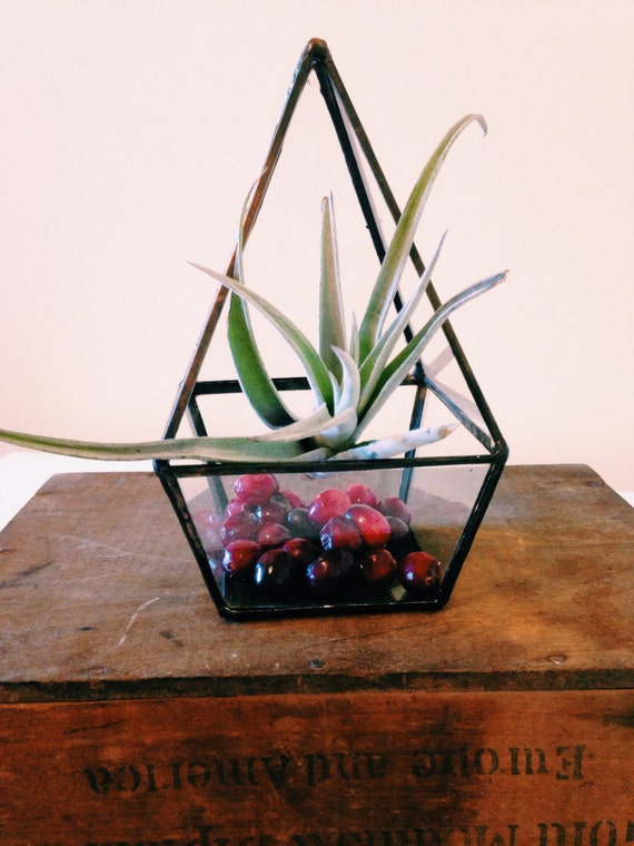 Geometric glass terrarium large pyramid wedding reception