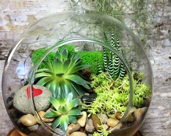 Succulent Terrarium - Lots of Love Hanging Succulent Terrarium, Succulent DIY Kit, Gift