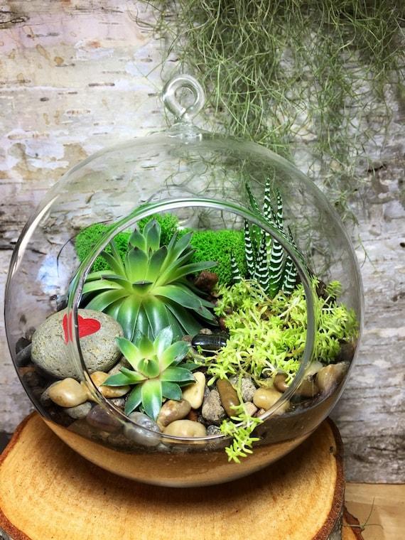 Items similar to Succulent Terrarium
