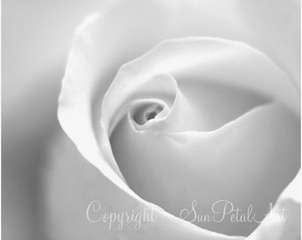 Black and White Wall Art of a White Rose, Black and White Photography, White Wall Art, Modern Home Decor, Black and White Flower Photography