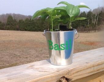 Indoor or Outdoor Planter/Bucket