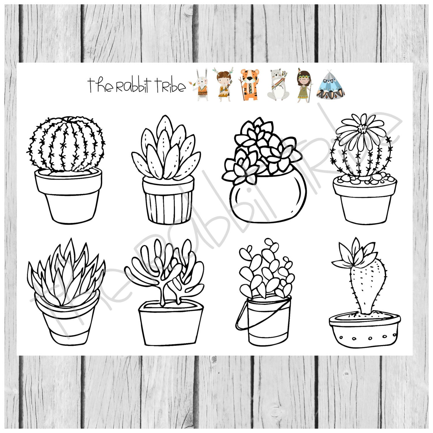 coloring boxes succulents cactus coloring in