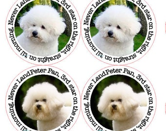 Customised round address stickers for your pet dog, cat, bird, fish