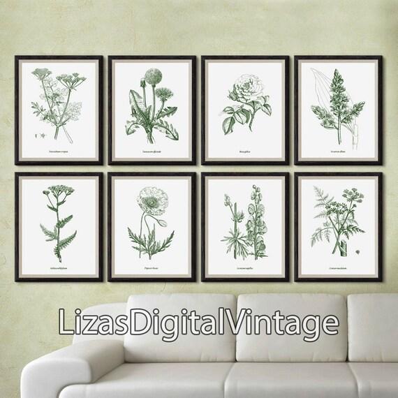 Set of 8 prints, Botanical prints, Wall art print set, Wall art set, Set of vintage botanical prints, Printable set, Illustration set, JPGA3