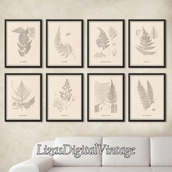 Home wall decor, Instant download print set, Set of 8 prints, Antique fern illustrations, Illustration set, Vintage botanical print set, JPG