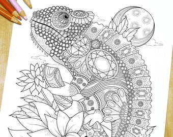 Lovely chameleon with gorgeous gem - Adult Coloring Page Print