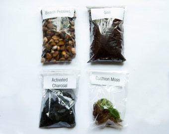 Cushion Moss Terrarium Kit / Soil Mix / Activated Charcoal / Beach Pebbles  / Cushion Moss by Geodesium