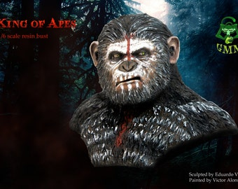 King of Apes bust 1:6 scale, bust statue, bust sculpture ,blank resin, Caesar planet of the apes, ape sculpture, chimp sculpture, chimp bust
