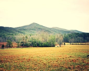 Smokie Mountains