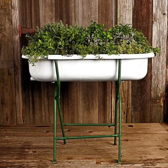 baby bath hungarian vintage. Black Bedroom Furniture Sets. Home Design Ideas
