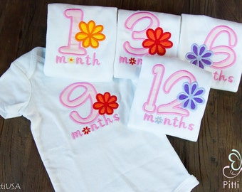 Monthly Baby Girl Applique Bodysuit  Set - Monthly Onesie Set for Girl - First 12 months Embroidered & Appliqued  Flower Onesies