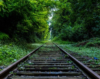 Train Track - Railroad - Rail - Railroad Photo - Railroad Photography - Nature - Digital Print - Digital Photo - Instant Download - Wall Art