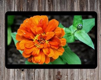 Orange Flower, Floral Photography, Floral Art, Flower Print, Plants Photo, Nature Photo, Spring Flower, Printable Wall Decor, Orange Spring