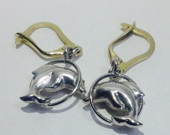 Earrings Delphine with White Gold