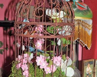 Beautiful Birdcages!