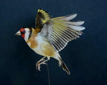Template papercraft Goldfinch in flight