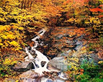 Waterfalls, New England Autumn, Vermont Travel Photo, Red Orange Gold Trees, Landscape,  Wall Decor