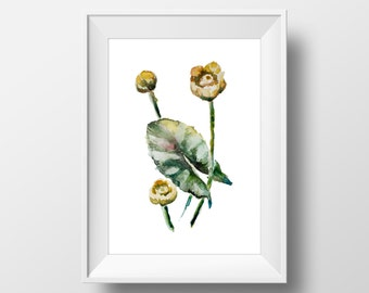 Watercolor Botanical Illustration Flower Print,Wall Art Print Herb,Printable Botanical Illustration,Watercolor Print,Kitchen,Living room
