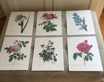 Vintage PJ Redoute numbered botanical prints
