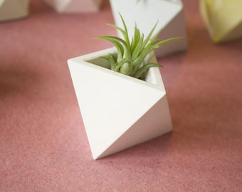 Triangle Geometric Planter