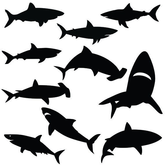 Shark svg silhouette pack shark clipart digital download