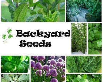 Herb Collection: 10 herb seed packets