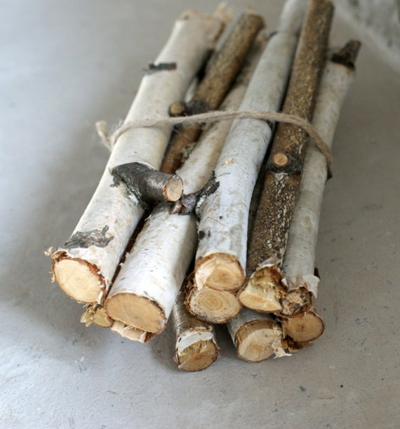 15 Birch Sticks Birch Log White Birch Branches By
