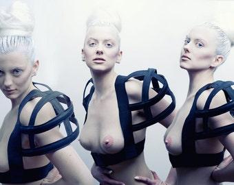 albino movement