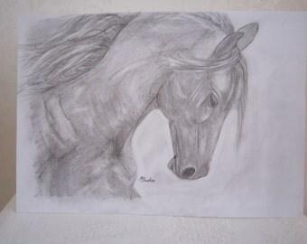 Horse pencil sketch