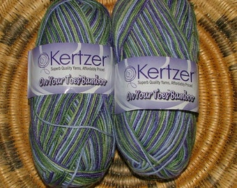 S R Kertzer On Your Toes Bamboo Made in Turkey Color No KOB.0110 Lot No 2767 Iris Multi Crochet Knit