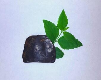 Mexican dream herb 3x extract!  ( Calea Zacatechichi ) 1 gram