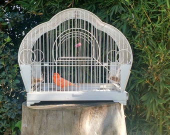 Old cage for Canaries