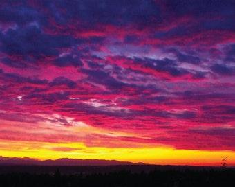 Backyard sunset (Canvas)