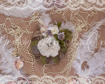 Newborn Digital Backdrop (feather/pearl/nest)