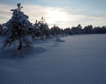 Winter photography nature snow nordic digital