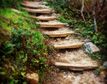 Garrapata Steps, Nature Steps, Nature Trail