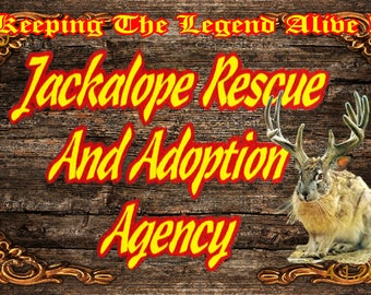 Unique novelty botlles, jewelry boxes and bumper stickers for the Jackalope Rescue And Adoption Agency Novelties
