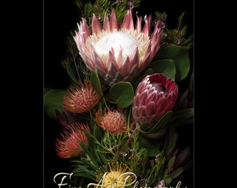 Red Protea Etsy