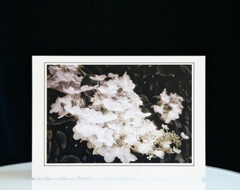 Card Art - Handmade - White Blossoms - Birthday - Wedding - Holidays - Anniversary - Free Shipping