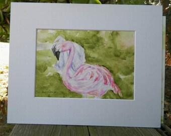 Flamingos Watercolor Art Original Painting Flamingo Nature Bird California Artist Debra Alouise