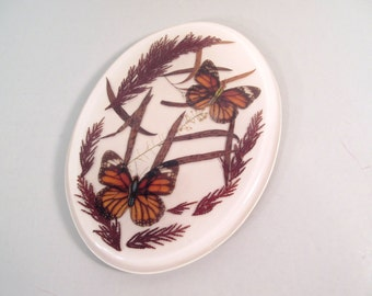 Vintage butterfly trivet, real butterfly in resin trivot, kitchen decor, monarch butterfly