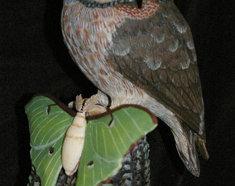 Handmade Wood Carving (woodcarving) Saw-whet Owl & Luna Moth in Tupelo