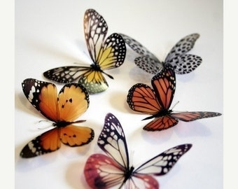 NEW YEAR SALE 12 x 3D Natural Transparent Butterflies for use in Decorating or as a Craft Supply