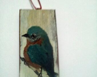 Little blue bird on old wood