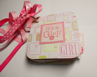 Baby Girl First Year Mini Album Chipboard Scrapbook, Baby Girl Mini Album, Baby Girl Brag Book, Premade Album, Baby Girl album, First Year