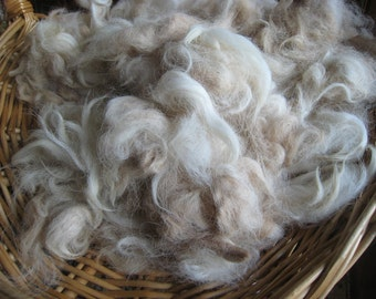 Beige Alpaca Fiber, Washed Alpaca Half Pound, Natural Variegated Beige Alpaca, Mixed Lengths and Textured, Seconds Fibers to Spin or Felt