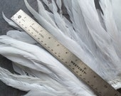 COQUE TAIL FEATHERS Loose / True White,  Not dyed, All Natural /  190