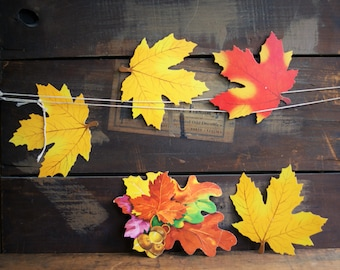 Dennison Fall Leaves for Back to School Bulletin Board, Classroom Decor, Leaf Diecuts, Autumn Foliage | Maple and Oak
